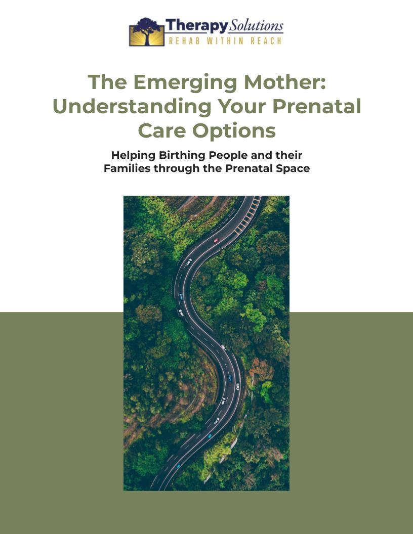 Free Prenatal Care Options Ebook!